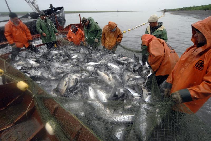 хранение рыбы во время рыбалки