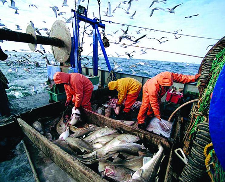 рыбалка в европе правила
