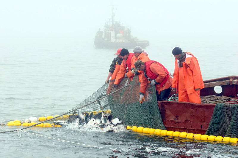 работа на судне рыбацком